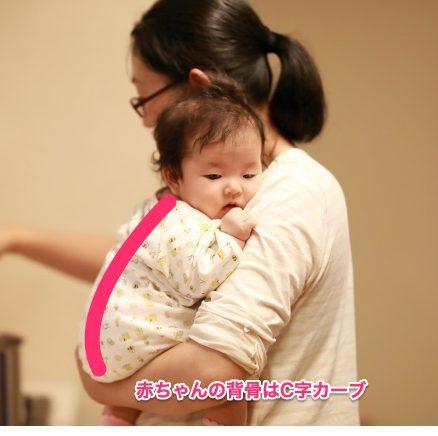 赤ちゃんの背骨はC字カーブ