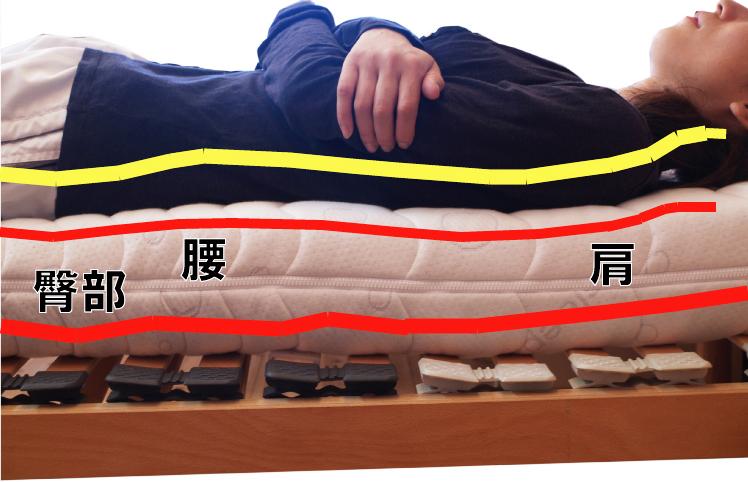 仰向け寝時の骨格の形